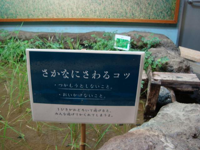 吉祥寺「井の頭自然文化園 分園」に行く。 ①_f0232060_14475044.jpg
