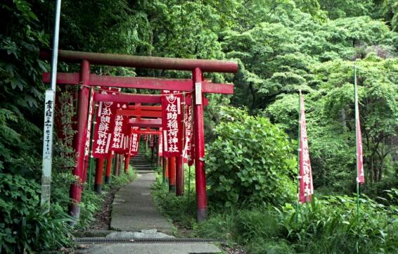 佐助稲荷神社。_b0112584_23474782.jpg