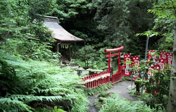 佐助稲荷神社。_b0112584_23495221.jpg