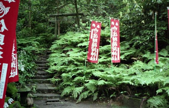 佐助稲荷神社。_b0112584_23501723.jpg