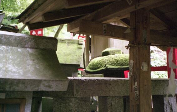 佐助稲荷神社。_b0112584_23524137.jpg