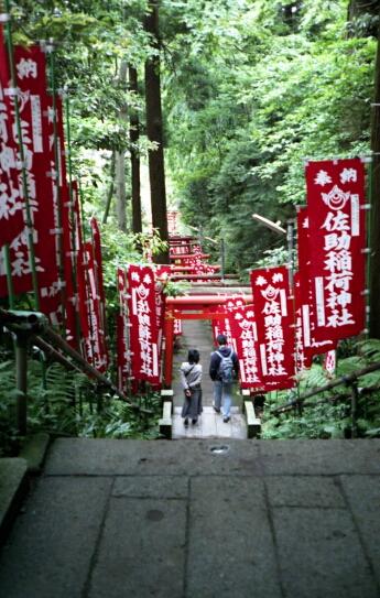 佐助稲荷神社。_b0112584_2353529.jpg