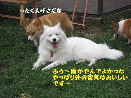 f0212597_5161610.jpg