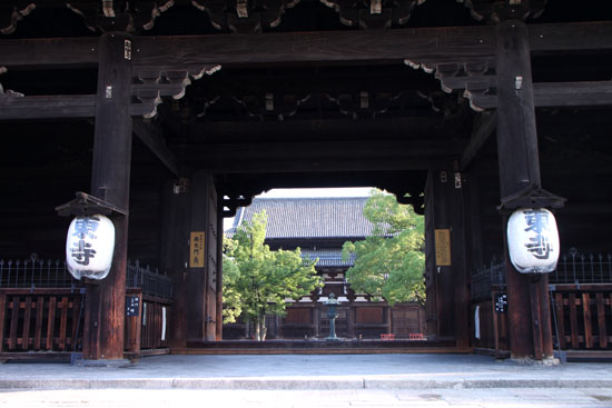 東寺 放生池のハス_e0048413_9263097.jpg
