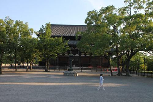 東寺 放生池のハス_e0048413_926547.jpg