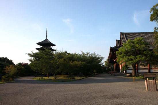 東寺 放生池のハス_e0048413_927133.jpg