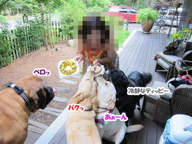 Happy Birthday 3_e0192217_749525.jpg