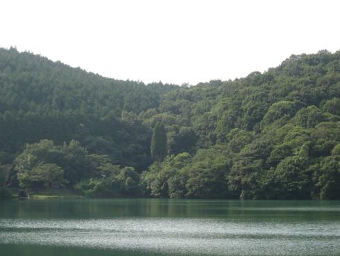 「グリーン グリーン ビレッジ」 日田で~_a0125419_22302129.jpg