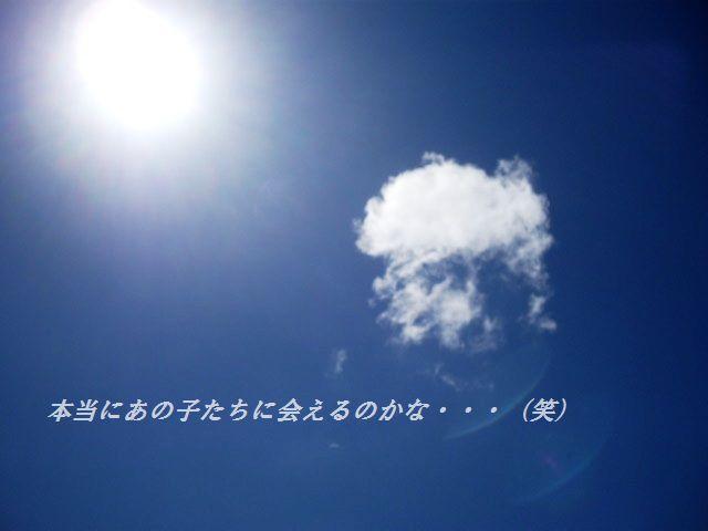 d0104926_2382761.jpg