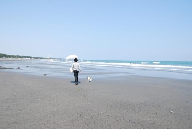 愛犬と旅行(6月のこと)_c0099133_1629301.jpg