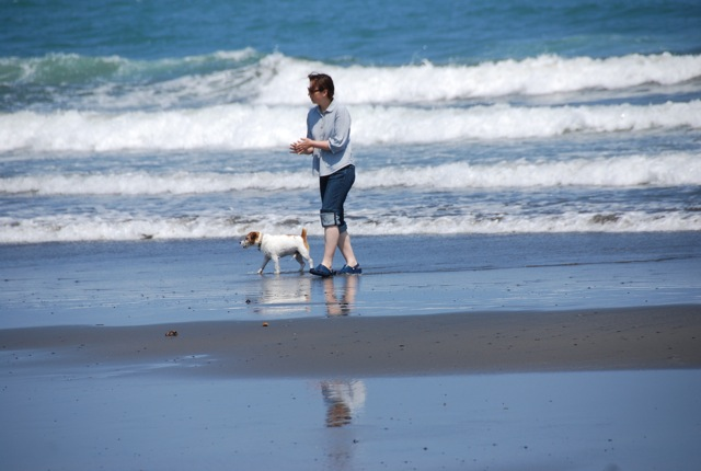 愛犬と旅行(6月のこと)_c0099133_16314686.jpg