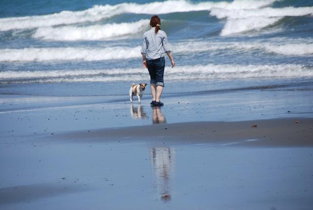 愛犬と旅行(6月のこと)_c0099133_1632166.jpg