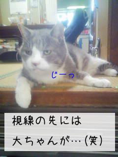 f0008935_16514984.jpg