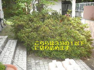 f0031037_20515566.jpg