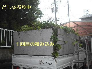 f0031037_20545091.jpg