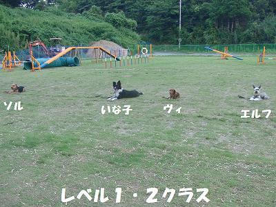 f0186040_22223326.jpg