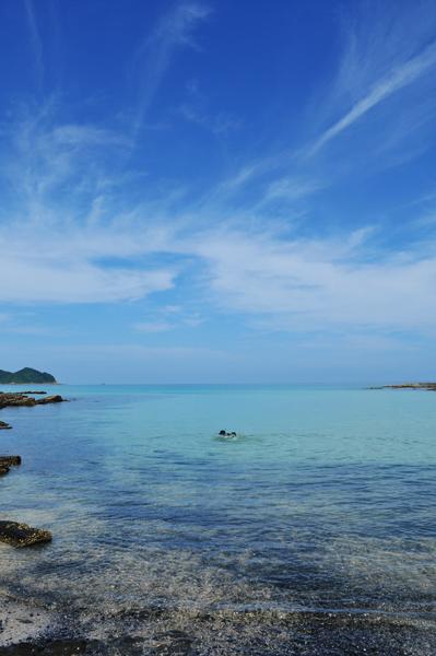 南の島の盛夏_a0003650_21345747.jpg