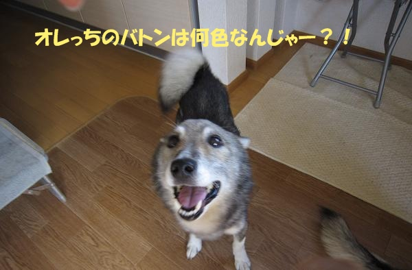 c0000189_1550472.jpg