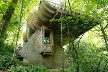 森の家_d0087595_840657.jpg