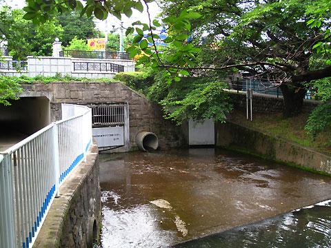 柴崎分水(立川分水)(5)根川合流点から先と、いくつかの分水路遺構_c0163001_23155189.jpg