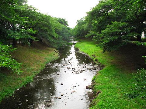 柴崎分水(立川分水)(5)根川合流点から先と、いくつかの分水路遺構_c0163001_23155692.jpg