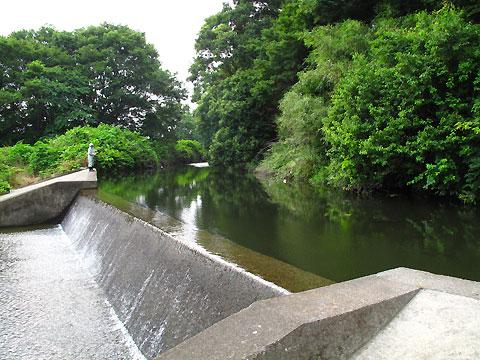 柴崎分水(立川分水)(5)根川合流点から先と、いくつかの分水路遺構_c0163001_23161022.jpg