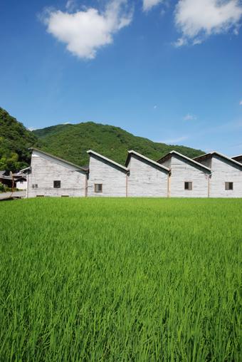北播磨 多可町の風景_c0195909_14363826.jpg