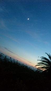 夏といえば海 海に行くなら日間賀島w_b0103620_7442632.jpg