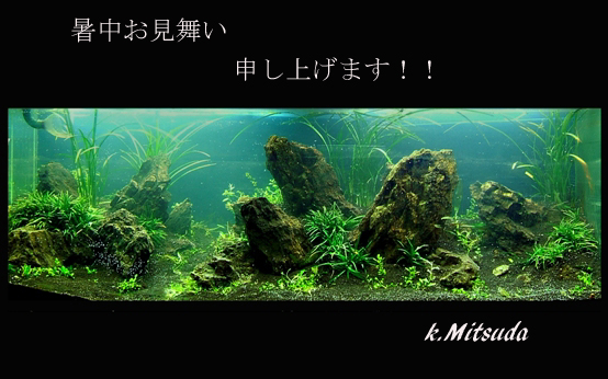 a0046952_1737884.jpg