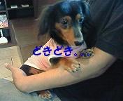 b0160052_8544992.jpg