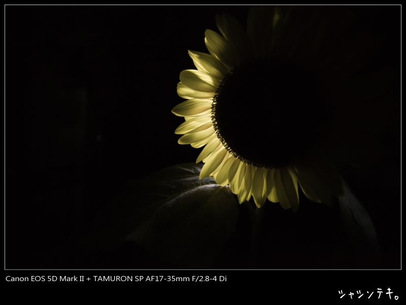c0194174_22201618.jpg