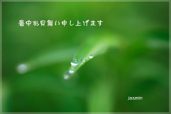c0145780_15572093.jpg