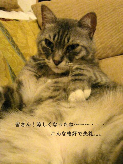ビタミンで元気はつらつのFUJI!!??_c0179785_6201096.jpg