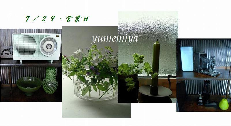 c0120002_811540.jpg