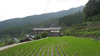 北播磨 多可町の風景 岩座神の棚田(いさりがみのたなだ) _c0195909_21412962.jpg