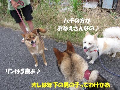 f0143123_20105556.jpg