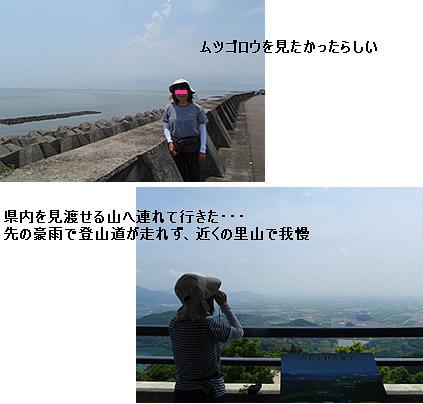 b0047081_124993.jpg