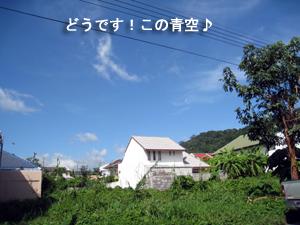 f0144385_14363859.jpg