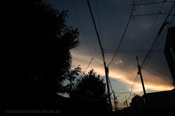 d0158191_20124021.jpg