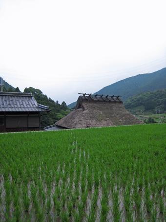 北播磨 多可町の風景 民家のかたち_c0195909_21525145.jpg