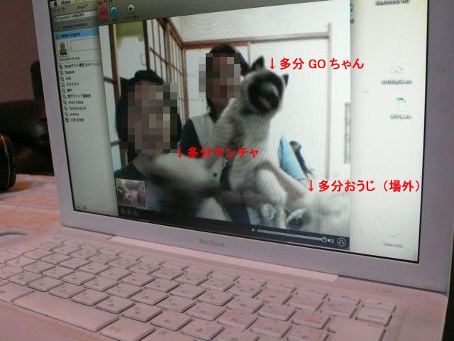 f0227709_182457.jpg
