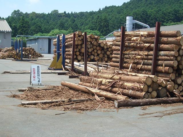 暑かった「木こりツアー」で富士ひのき加工協同組合へ_f0141310_23124535.jpg