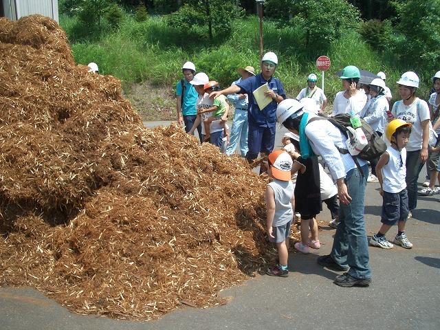 暑かった「木こりツアー」で富士ひのき加工協同組合へ_f0141310_23131248.jpg
