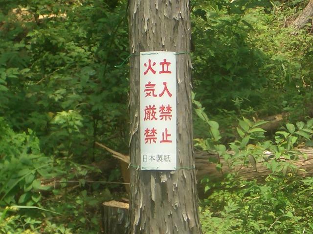 富士ひのきの森林認証林で「木こりツアー」_f0141310_459915.jpg