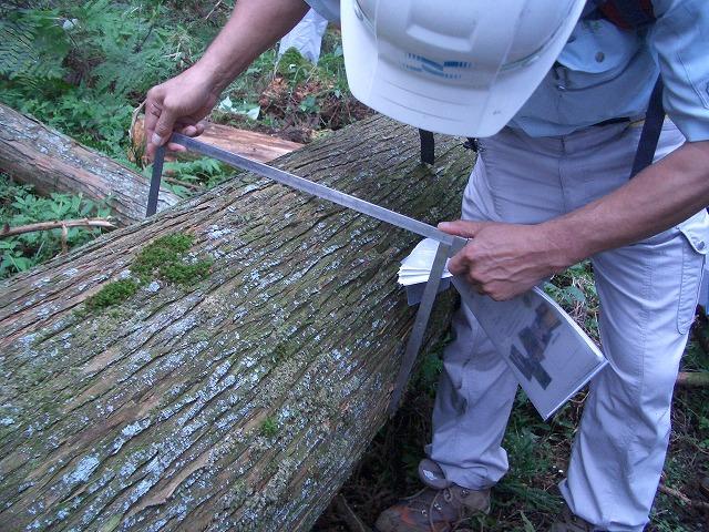 富士ひのきの森林認証林で「木こりツアー」_f0141310_521294.jpg