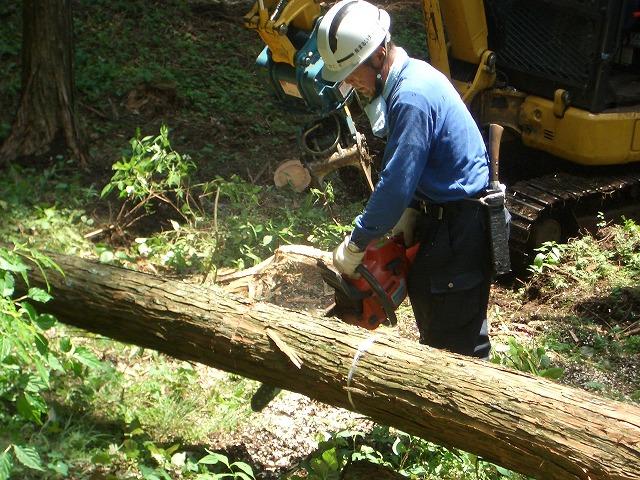 富士ひのきの森林認証林で「木こりツアー」_f0141310_52304.jpg