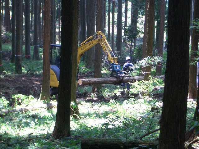 富士ひのきの森林認証林で「木こりツアー」_f0141310_524812.jpg