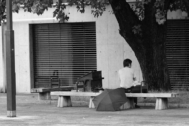 町角ニャンコ・愛でる人達_f0032011_1931225.jpg