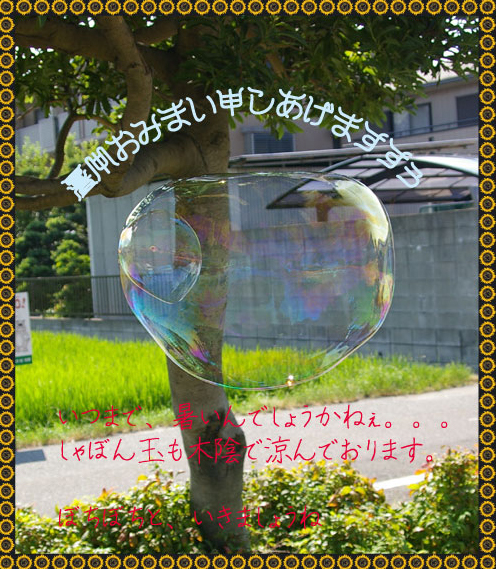 c0012819_18181826.jpg