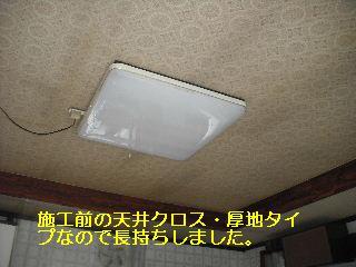 f0031037_2124095.jpg